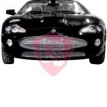 Jaguar XK8 / XKR / X100 1996 tot 2001 Cabrio RVS Koelgril