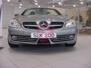 Mercedes-Benz SLK171 RVS Koelgril (3-delig) 2008-2011