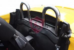 Fiat Barchetta RVS rolbeugel 1995-2005
